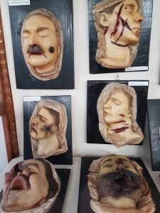A photo of six different wax heads, all showing signs of trauma.
