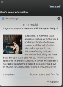 Siri returns results for the word Mermaid.