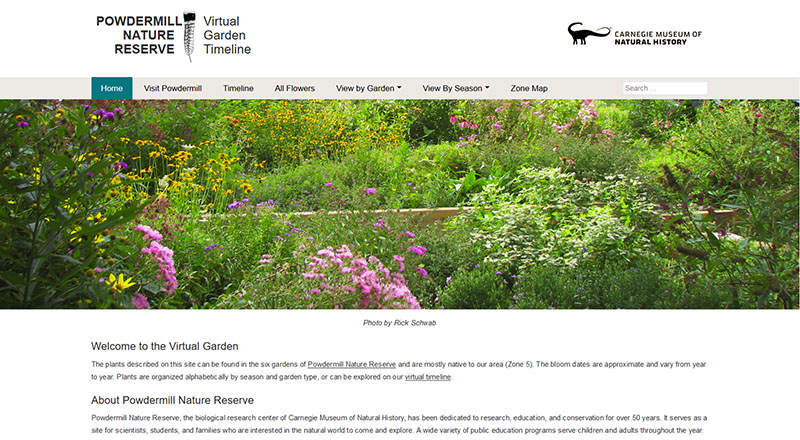 Figure 5: The Virtual Garden Timeline Main Page