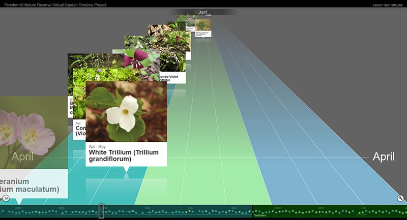 Figure 7: Plant Timeline (partial)