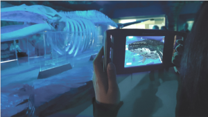 Figure 5: The Museum ExplorAR in use in the 'Underwater Life' experience