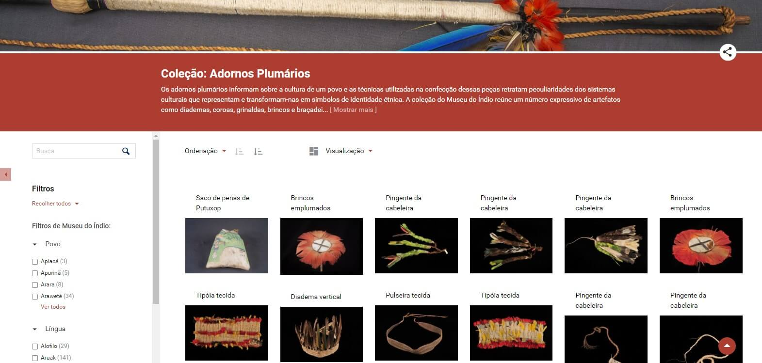 Print from the Home Page screen of the Indian Virtual Museum, in Tainacan software, displaying a collection of Brazilian feathered adornments.